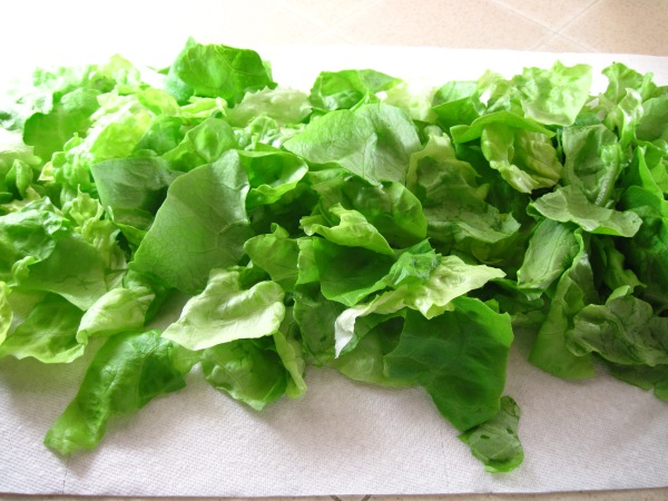 Lettuce on paper towel