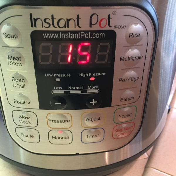 instant-pot-15-minutes