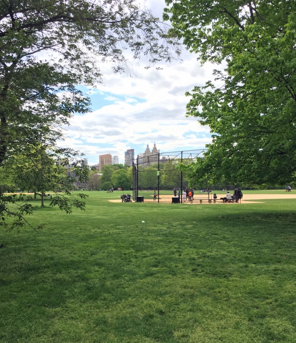 Baseball practice in Central Park