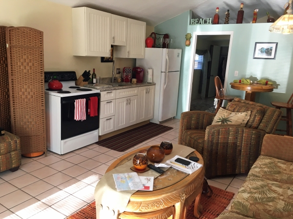Living room and kitchenette at the Lovely Guest House
