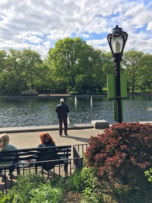 Sailboat Pond Central Park