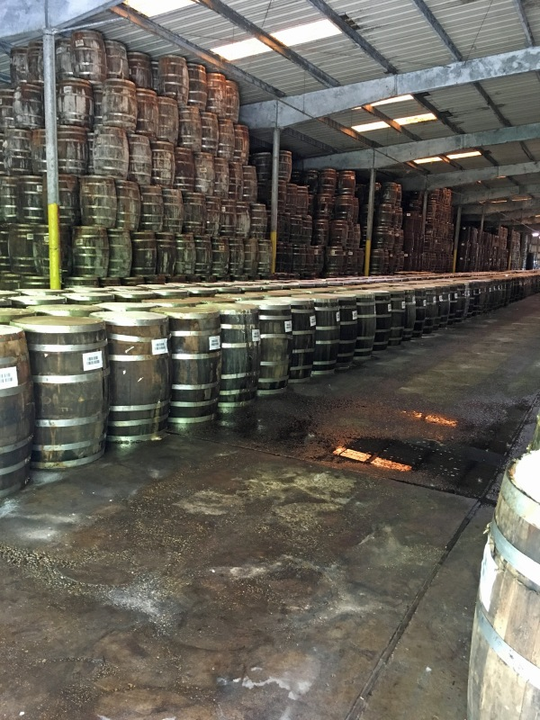Barrels of Tabasco.jpg