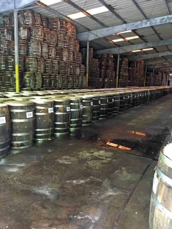 Barrels of Tabasco.jpg