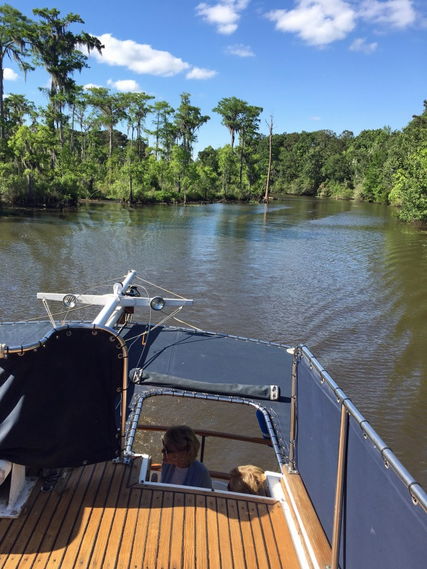 Cruising down the Tchefuncte River near Madisonville, LA