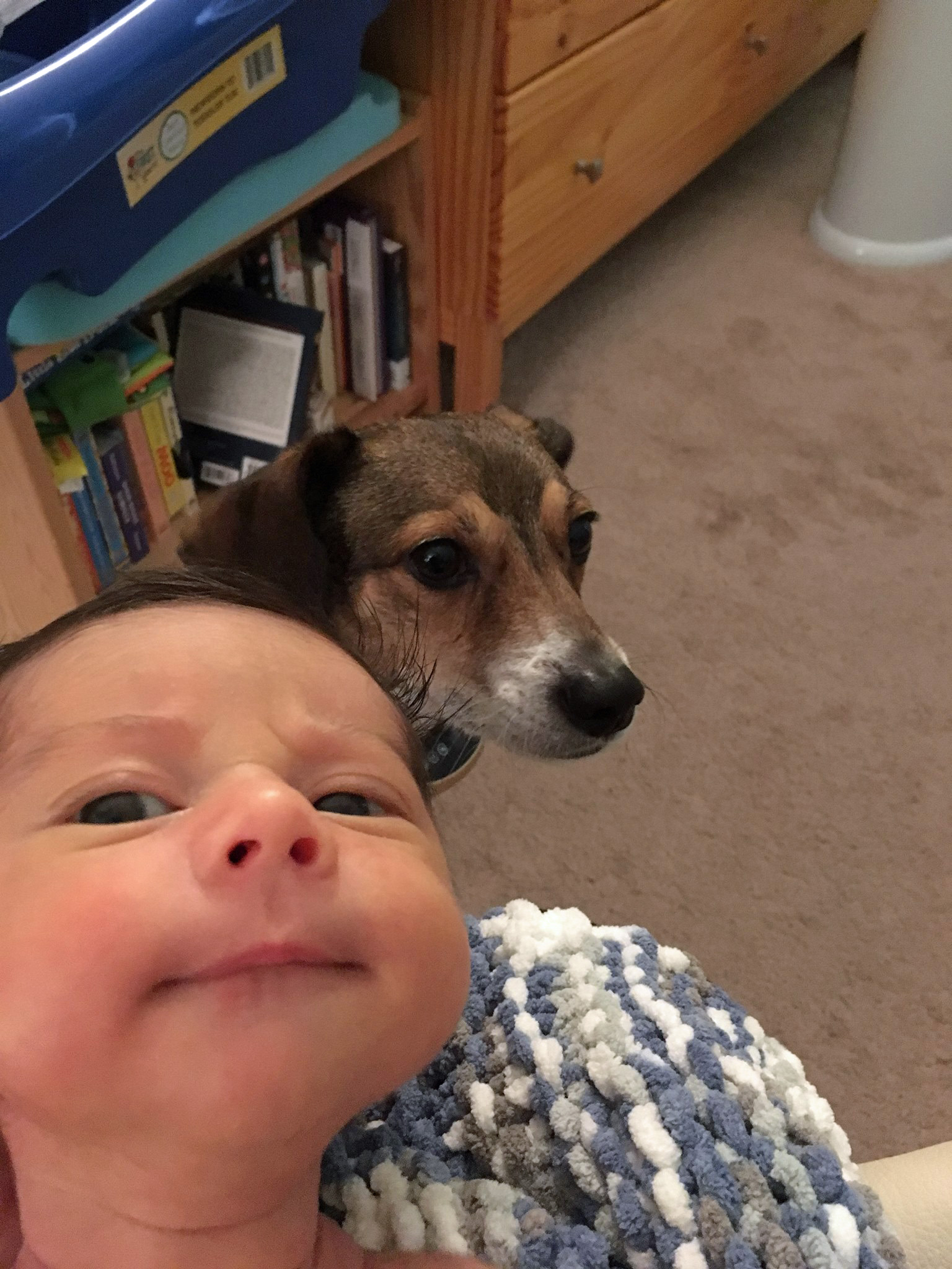 Emerson (16 days old) and Louie